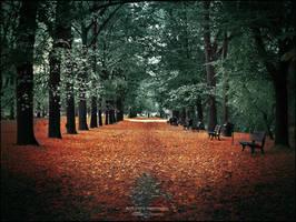 Autumns memories by WojciechDziadosz
