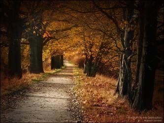 The Path to the Destination by WojciechDziadosz