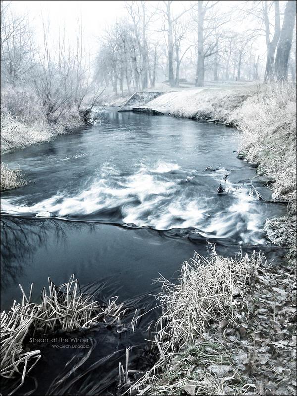 Stream of the winter by WojciechDziadosz