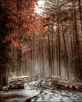 Voice of Longing Forest by WojciechDziadosz