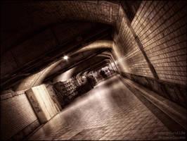 Underground life by WojciechDziadosz