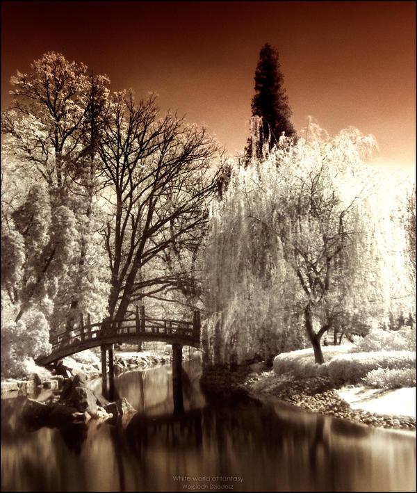White world of fantasy by WojciechDziadosz
