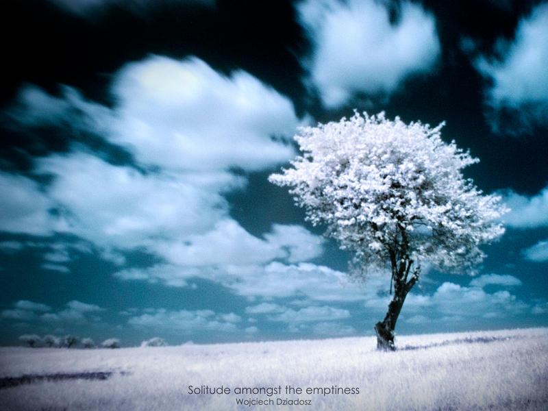 Solitude amongst the emptiness by WojciechDziadosz