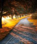 Evening passage by WojciechDziadosz