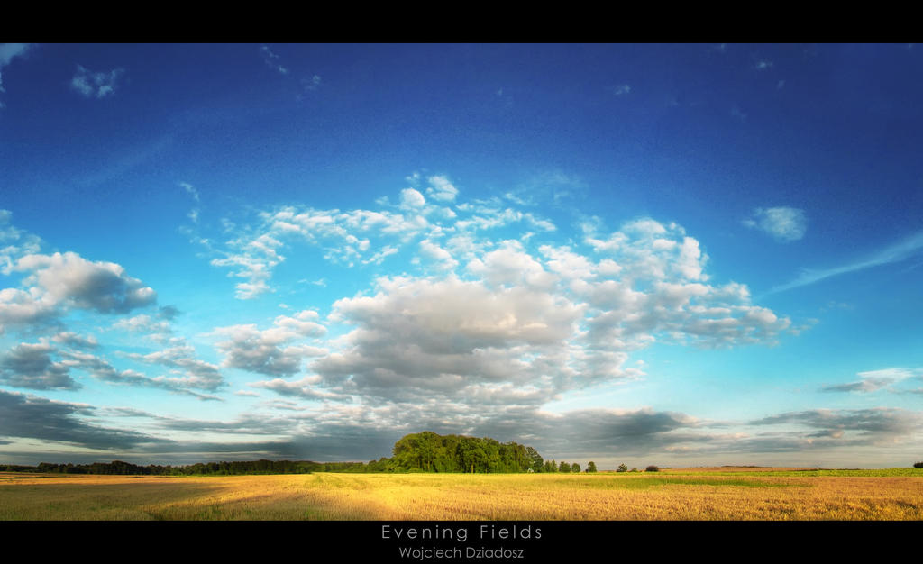 Evening Fields by WojciechDziadosz