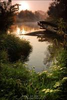 Dawn at the river by WojciechDziadosz