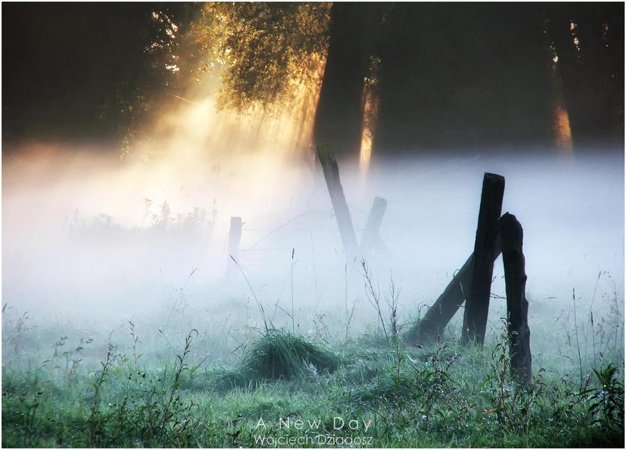 A New Day by WojciechDziadosz