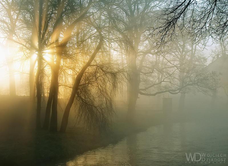 Blades of light by WojciechDziadosz