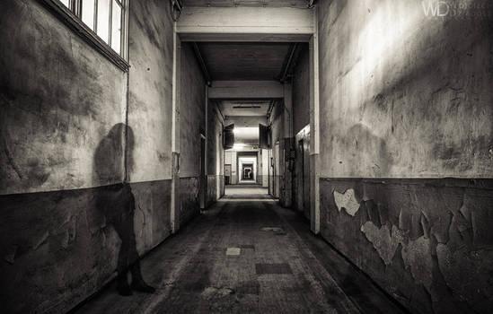 Desolate soul by WojciechDziadosz