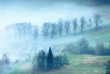 Alley in the fog by WojciechDziadosz