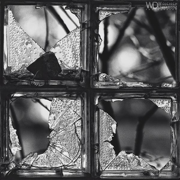 Forgotten windows by WojciechDziadosz