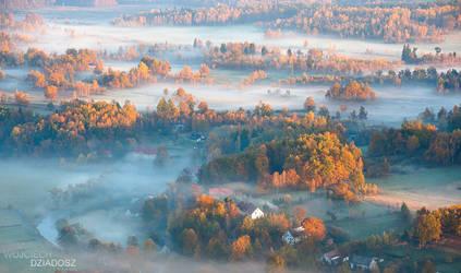 golden autumn III