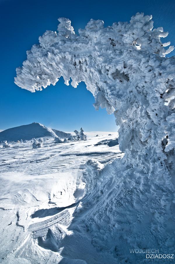Ice Desert II by WojciechDziadosz
