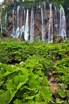 Plitvice waterfalls III
