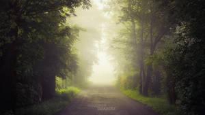 Magical Alley by WojciechDziadosz