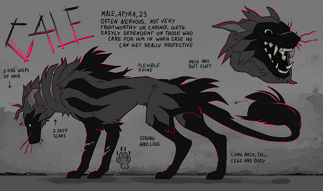 Cale 2019 by Akirow