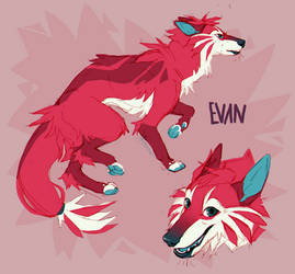 evan ref by Akirow