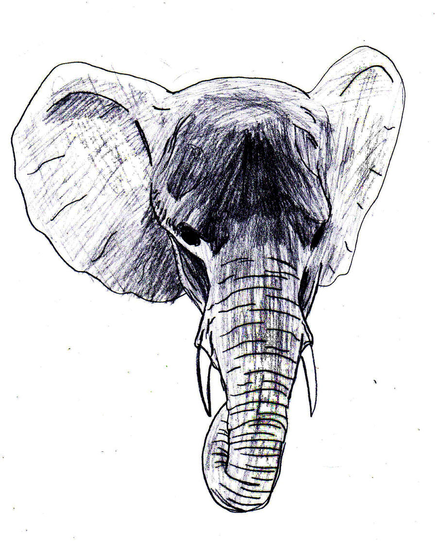 Elephant head outline tattoo