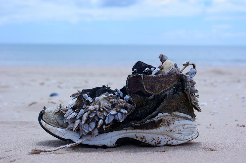neptunes sneaker by isischneider