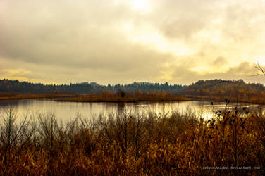 rusty autumn by isischneider