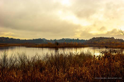 rusty autumn