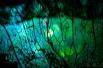 Leaf Fiber by isischneider