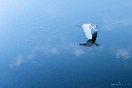 Gliding Over Water