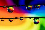 Rainbow Rain by isischneider