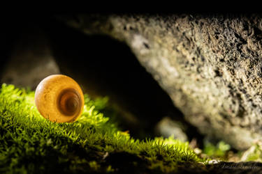 Resting In The Cave by isischneider
