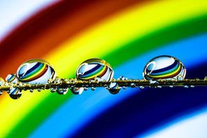 Spectral Color Drops