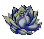 Blue Lotus...