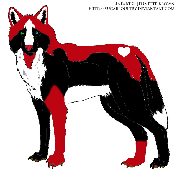 random black red n white wolf by hakeberebekah on deviantart