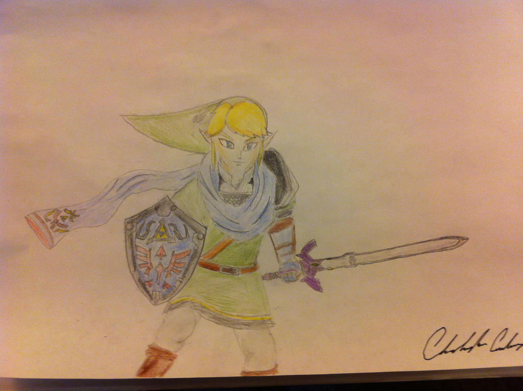 Hyrule Warriors Link by thelinkleonxkennedy2