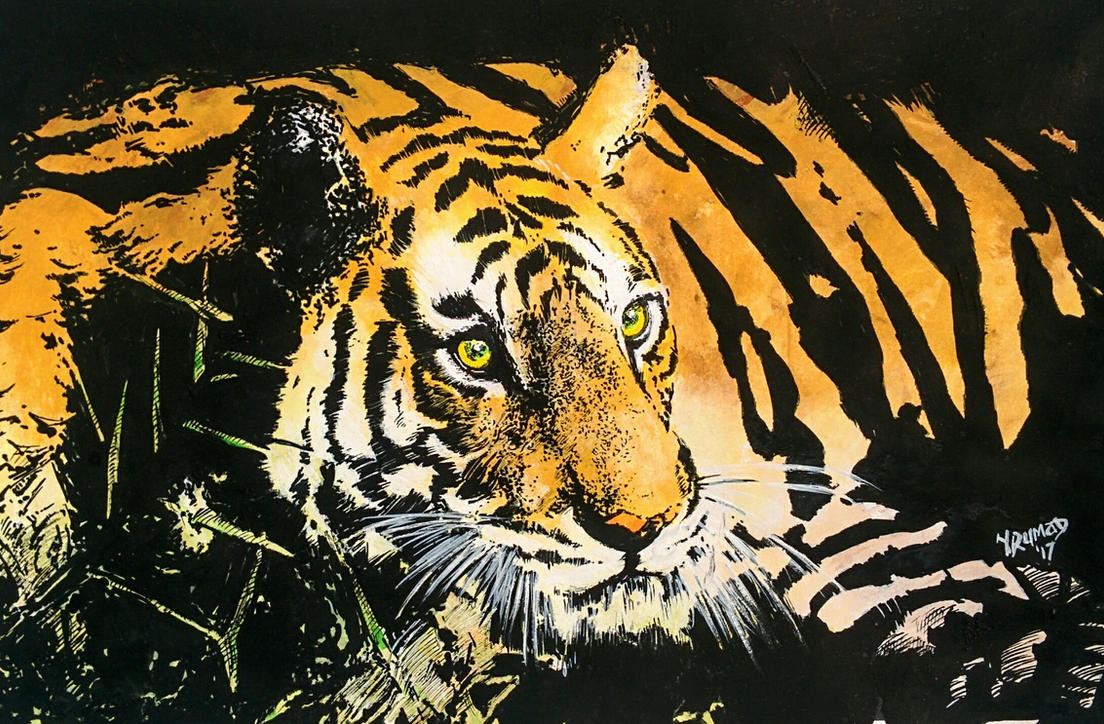 Tiger by yrumad