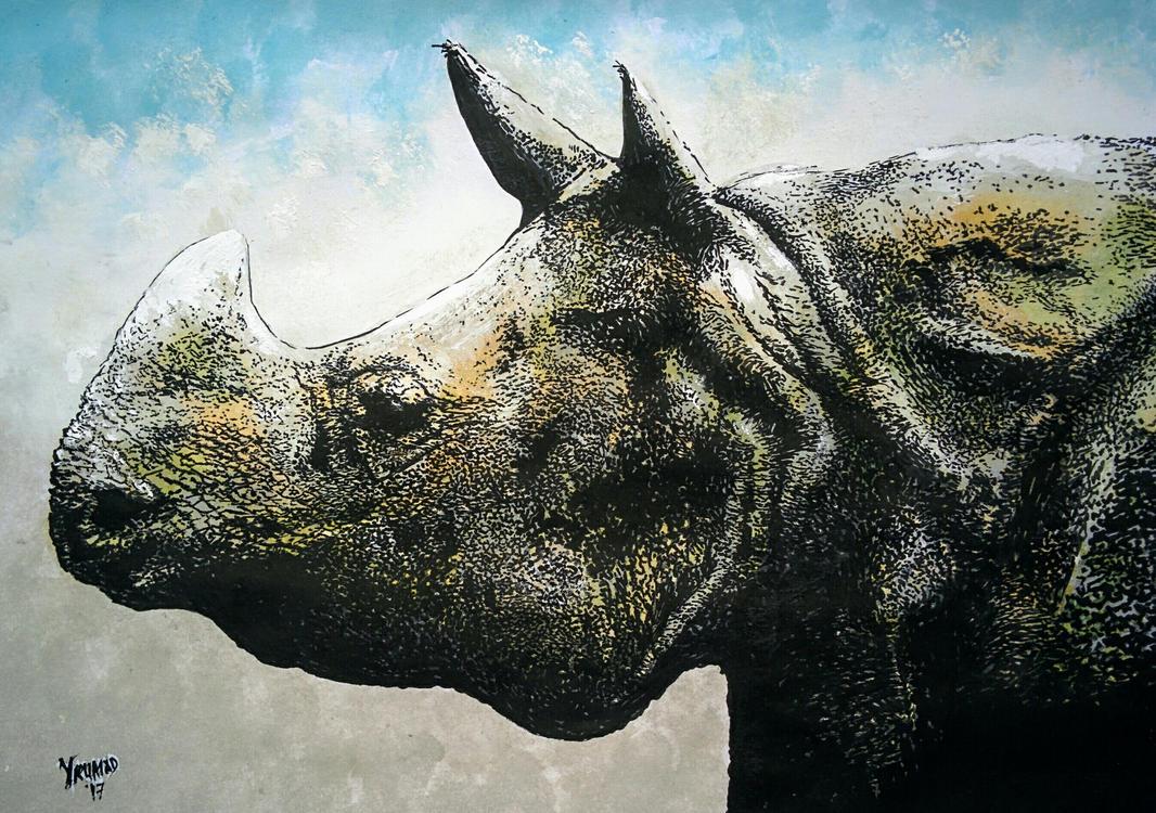 Rhino by yrumad