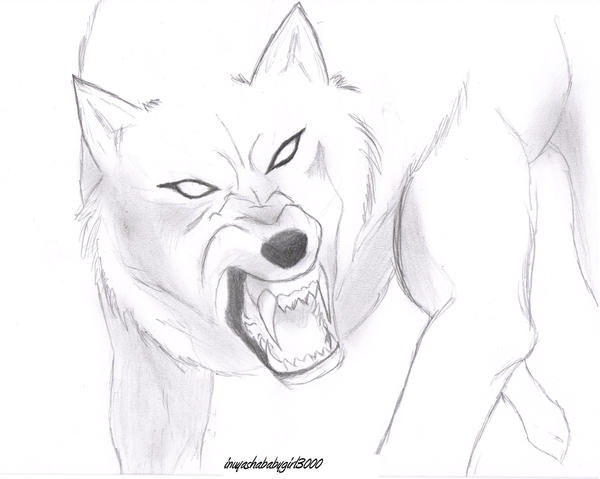 mad wolf drawings - photo #2