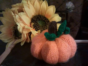 Pumpkin! by foxymitts