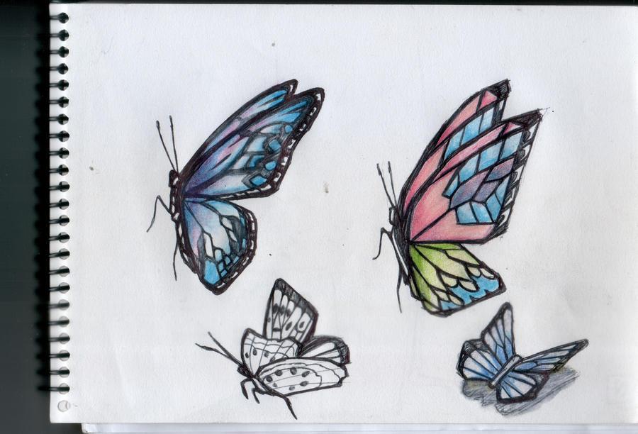 Mariposa - Butterfly 1 by gusustavo