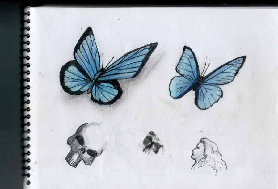Mariposa - Butterfly 2 by gusustavo