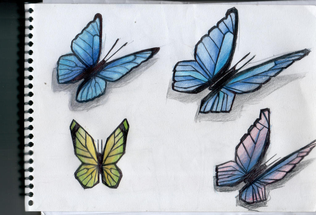 Mariposa - Butterfly 3 by gusustavo