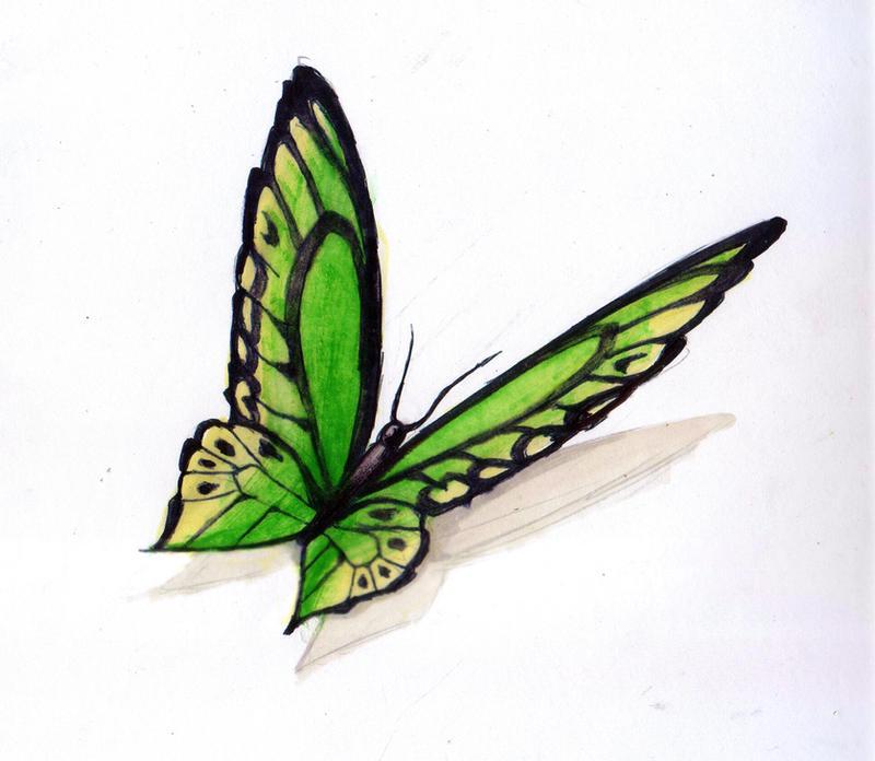 Mariposa - Butterfly 6 by gusustavo