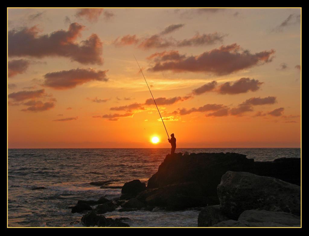 Sun fish fishing! by maska13