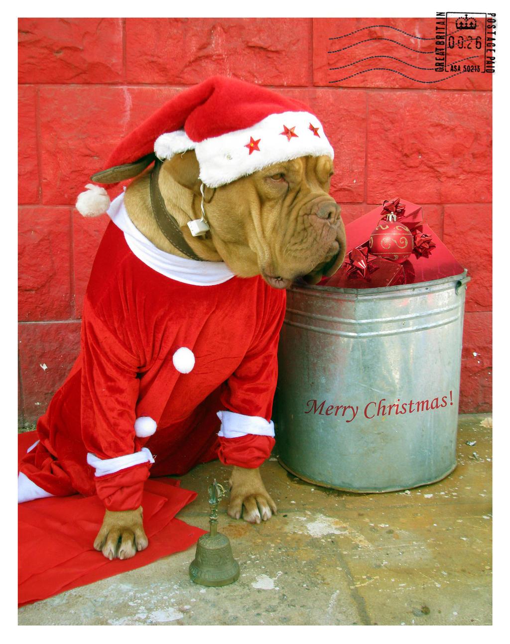 Merry Christmas by maska13