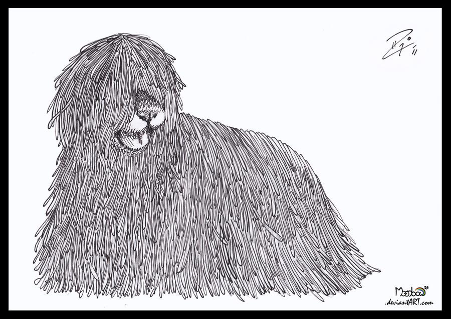 Ink Practice: Komodor Dog by Moonbow26