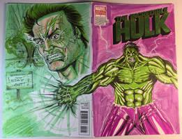 Incredible Hulk Sketch Cover by aldoggartist2004