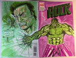 Incredible Hulk Sketch Cover by aldoggartist2004