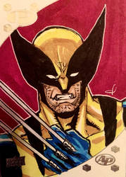 Classic Wolverine Sketch Card by aldoggartist2004