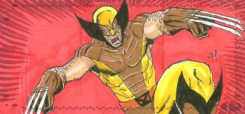 Wolverine Sketch Card by aldoggartist2004