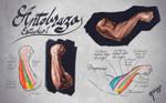 Forearm Digital Anatomy Study by RafaCM
