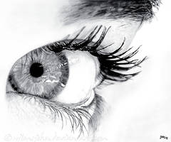 Eye by wilmsjohn